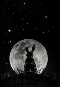 Dark Rabbit Holes