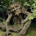 Worser Bay Tree Troll
