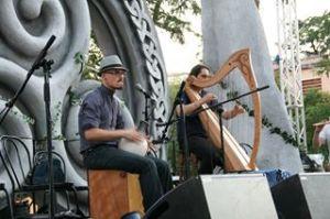 Musica: concerto d'arpa