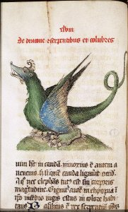 "Drago, dal ""Liber Floridus"" di Lambert di Saint Omers, Royal Library, Ms. 27 A 23, 1460, Lille/Ninove"