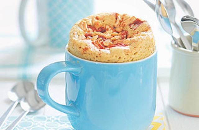 Peut On Remplacer La Levure Dans Un Mug Cake