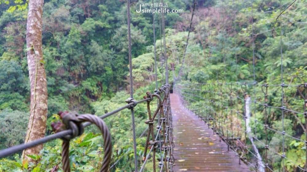 富源國家森林遊樂區 森林吊橋 | 花蓮瑞穗