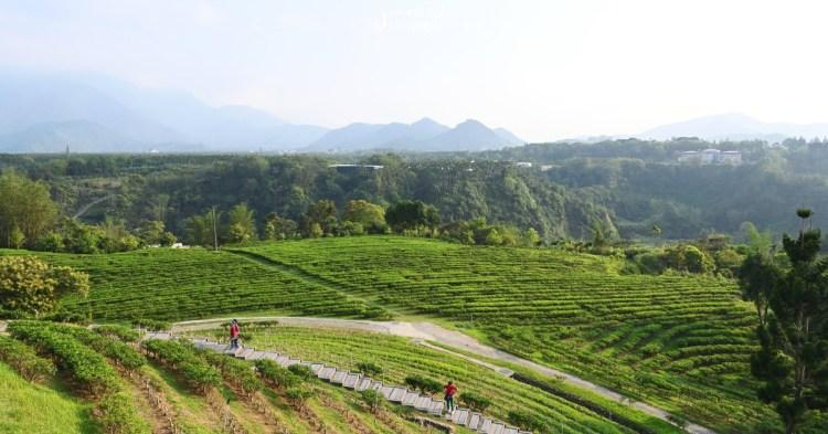南投山上住一晚!品茶、看大山峽谷壯闊美景吧