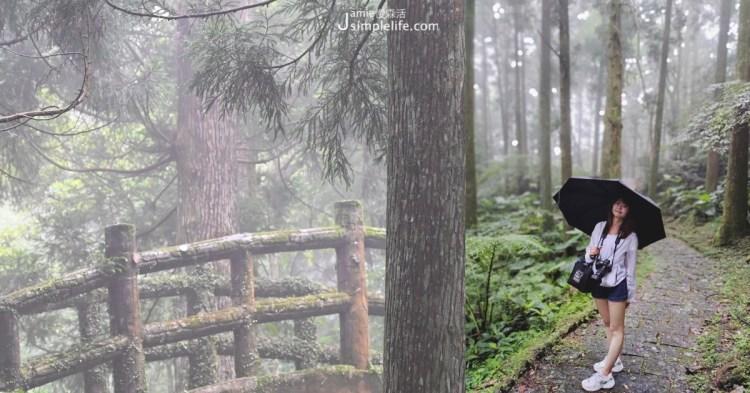 森林雨來的浪漫:桃園東眼山國家森林遊樂區,發現雲霧流動山林,負離子、綠葉的清香