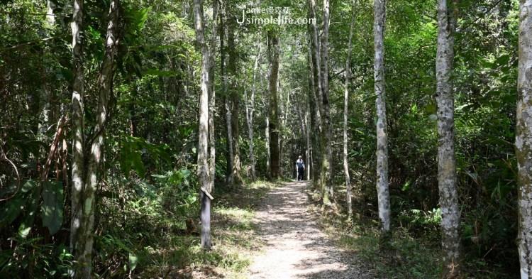 宜蘭三星簡單步道:拳頭姆自然步道,環烏心石造林地,遠望蘭陽平原
