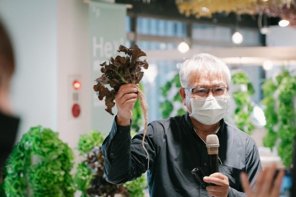 台中金典 綠園道商場 第六市場 療癒系的垂直水耕種植工作坊