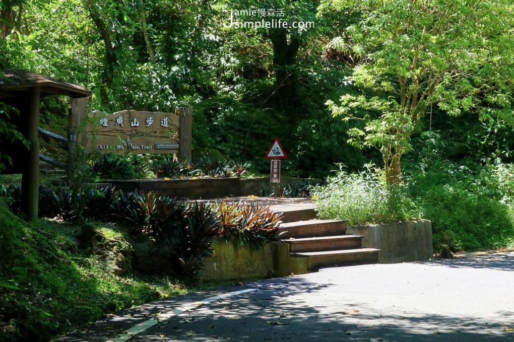 宜四季,環花蓮「鯉魚潭」3種玩樂方式 鯉魚山步道