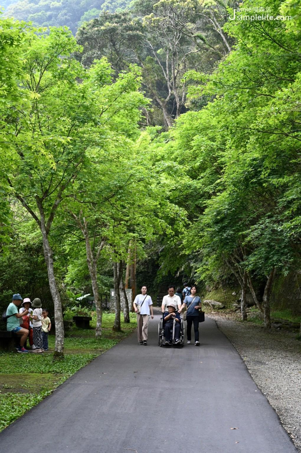 新北三峽「滿月圓國家森林遊樂區」健行步道與無障礙步道