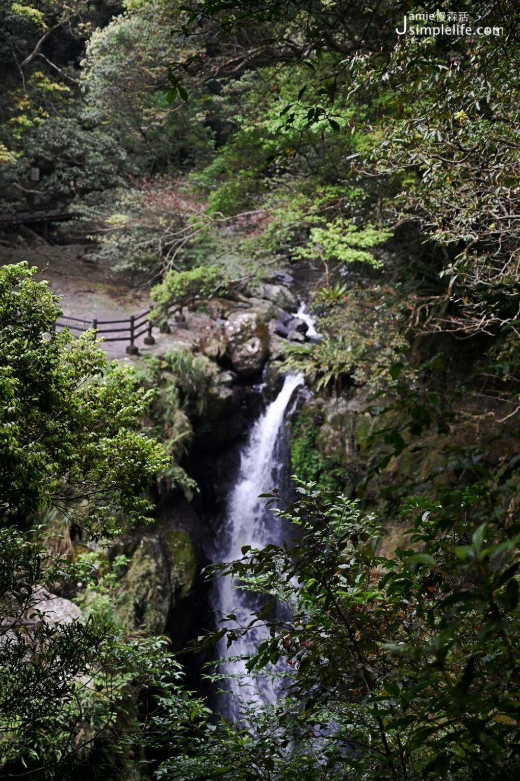 新北三峽「滿月圓國家森林遊樂區」滿月圓瀑布