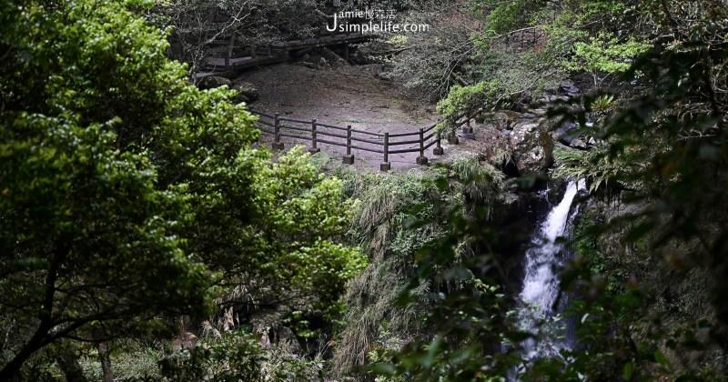 新北三峽「滿月圓國家森林遊樂區」親子步道享自然森林浴