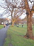 Tooting Bec Common.This photo links to my gallery of shots of the common from a New Year's Day stroll