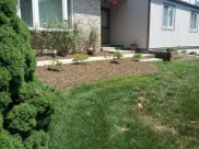 After the clean up, mulching and planting