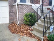 After Leaf Removal in Montgomery Village