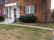 Before Clean Up and Mulching in Takoma Park