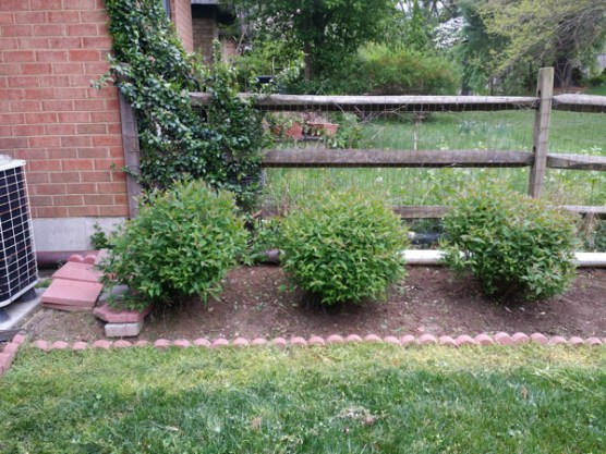 After Weeding a Flower Bed in Montgomery Village Maryland
