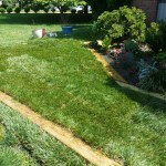 After Raised Bed and Sod Installation in Montgomery Village Maryland