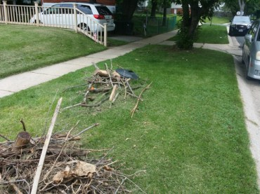 Before Debris Clean Up by JSV Lawn Care Service, JSV Lawns, JSV Lawns of MD. Lawn Care, Landscaping, Clean Up, Weeding, Weed Pulling, Aspen Hill, Montgomery County, Maryland