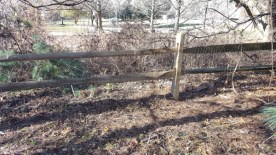 After Fence Repair by JSV Lawn Care Service, JSV Lawns, JSV Lawns of MD. Lawn Care, Landscaping, Gaithersburg, Montgomery County, Maryland