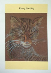 Sleeping Cat Artwork Card - Ref 206