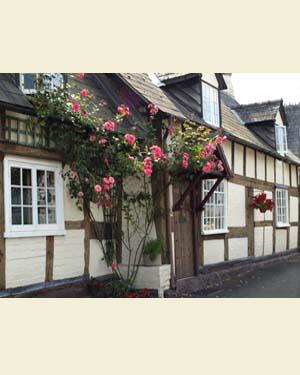 Fox Pie Cottage, Eardisley Front - Ref L12