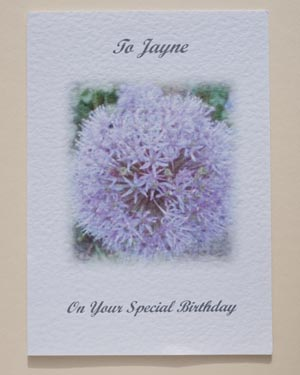 Allium - Special Occasion Birthday Card Front - Ref P121