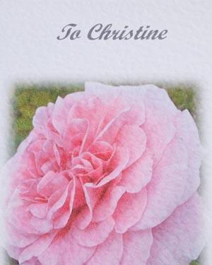 Rose - Birthday Card Closeup - Ref P123