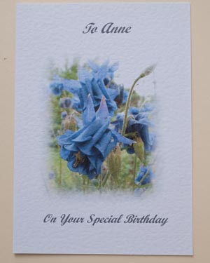 Aquilegia - Birthday Card Front - Ref P174