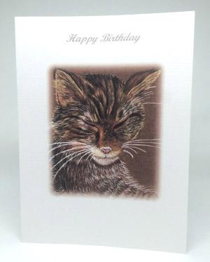 Sleeping Cat Artwork Card - Ref A206