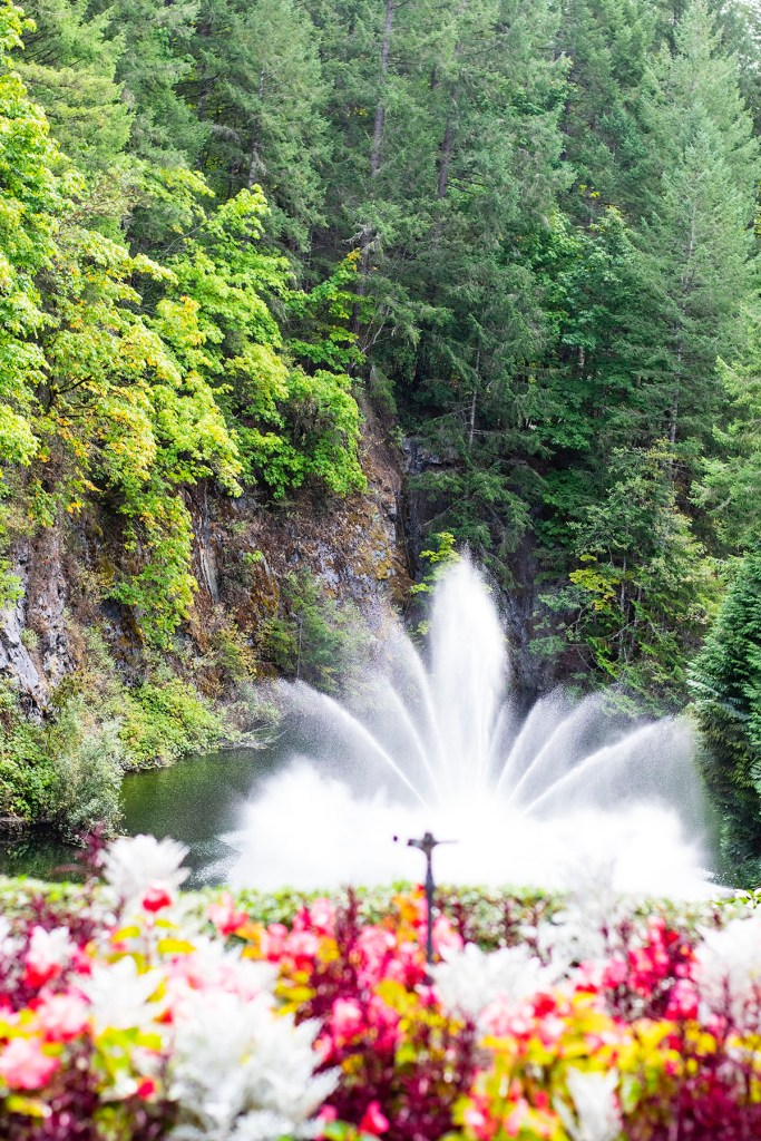 Alaska shore excursions in Victoria at Butchart Gardens in fall