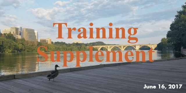 Training Supplement Banner - 0616117