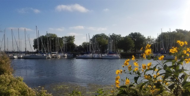 Washington Marina - 09272017