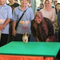 Kontes Ayam Serama