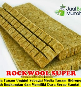 Media Tanam RockWool Super