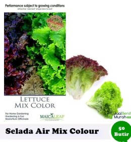 benih-selada-air-mix-color