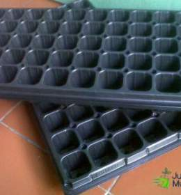 Media Tray Semai 50 lubang