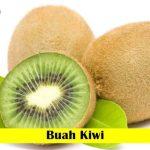 Benih Buah Kiwi (Maica Leaf)