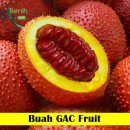 Buah GAC Fruit Maica Leaf