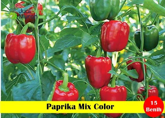 Paprika Miaca Leaf