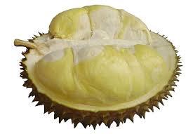 durian montong