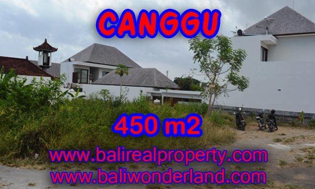 Tanah dijual di Canggu Bali 4,5 are di Batu Bolong