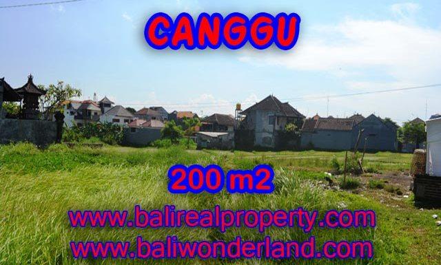 Tanah dijual di Canggu 200 m2 view sawah di Canggu Brawa