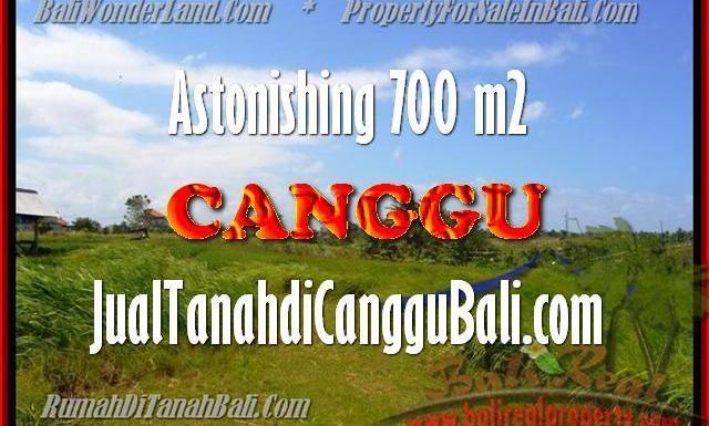DIJUAL MURAH TANAH di CANGGU BALI 7 Are di Canggu Kayutulang