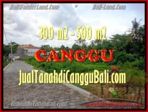 TANAH MURAH di CANGGU BALI DIJUAL 510 m2 di Canggu Pererenan