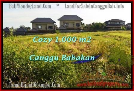 JUAL TANAH di CANGGU BALI 1,000 m2 View sawah link villa