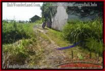 TANAH MURAH DIJUAL di CANGGU TJCG178