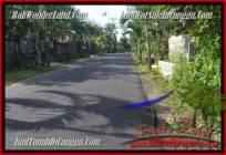 DIJUAL MURAH TANAH di CANGGU Untuk INVESTASI TJCG181