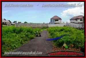 TANAH DIJUAL di CANGGU BALI 3,35 Are view alami