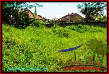 DIJUAL TANAH MURAH di CANGGU BALI 2 Are di Canggu Pererenan
