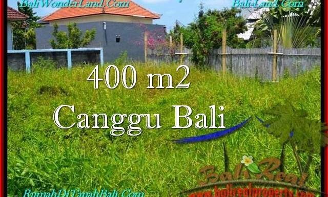 TANAH di CANGGU BALI DIJUAL 4 Are Lingkungan villa