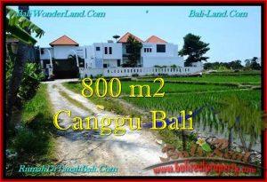 TANAH MURAH di CANGGU 800 m2  View sawah, lingkungan villa
